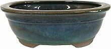 Brussel 's Rechteck Bonsai glasierter Keramik