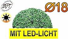 BTV Batovi Premium Buchsbaum mit LED-Lichtband