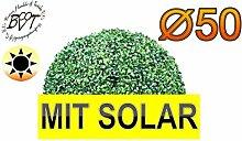 BTV Batovi Premium Buchsbaum mit Solarbeleuchtung,