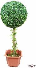 Buchs Buchsbaum 60 cm hoch + große Buchsbaumkugel Ø 23 cm 230 mm grün dunkelgrün KOMPLETT mit Echtholzstamm Holz und Deko Efeuranke + Moos auf Wunsch mit Solarbeleuchtung SOLAR LICHT BELEUCHTUNG (Zubehör) mit Terracotta Topf Plastik und stabilem Fuß (Zement) terakotta Blume pflegeleichte Plastikpflanze Plastikpflanzen pflegeleicht hochwertig Plastikblume Plastikblumen Kunstblumen Plastikbaum Plastikbäume Buxus Buchsus Buxkugel Buchskugel Gartendeko Dekoration im Garten