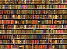 Bücherregal farbig Foto-Tapete 4-teilig - Fototapete Wallpaper 232x315cm. Beigelegt sind eine Packung Kleber und eine Klebeanleitung.