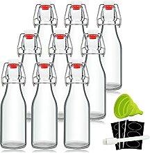 Bügelverschluss-Flaschen aus Glas mit luftdichter