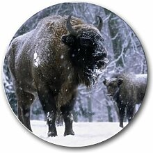 Buffalo Bison Scenic Nature Foto rund Mousepad Mauspad tolle Geschenkidee