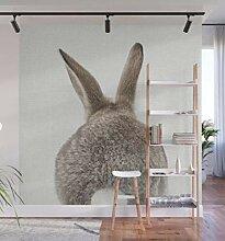 Bunny Tail Fototapete Wohnzimmer Schlafzimmer nach