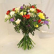 bunter Blumenstrauß Frühling mit frischen