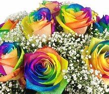 Bunter Blumenstrauß mit 10 Regenbogenrosen -
