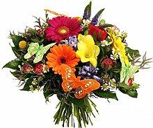 BUNTER Blumenstrauß   mit SCHMETTERLINGEN  