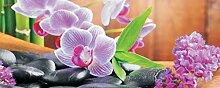BUVU Vlies Design Fototapete Orchidee (1)- Moderne