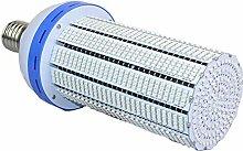 Buyleds 80W Vollspektrum LED Grow Lampe,E40 LED Pflanzenlampe (80W)