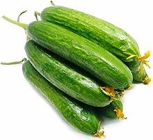 C-LARSS 30 Stück Obst Gemüsesamen, Hausgarten