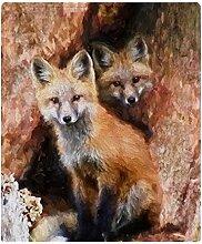 CafePress–Fox Cubs in Hohl Baum–weiche Fleece Überwurf Decke, 127x 152,4cm Stadion Decke, weiß, 50x60