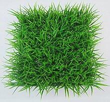 CAIJUN Teppiche Künstlicher Rasen, Plastikrasen, gefälschter Gras-Rasen-Teppich, Rasen-Weihnachtshochzeits-Fenster, zwei geladen Bereich Teppiche (größe : C-30*30cm/2)