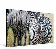 Calvendo Premium Textil-Leinwand 120 cm x 80 cm