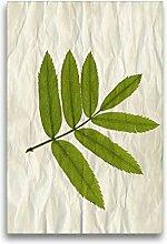 Calvendo Premium Textil-Leinwand 50 cm x 75 cm