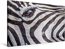 Calvendo Premium Textil-Leinwand 90 cm x 60 cm