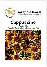 Cappuccino Sonnenhut-Rudbeckie von Bobby-Seeds