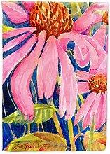Caroline 's Treasures 6027GF Echinacea