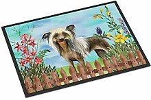 Caroline's Treasures Chinese Crested Spring