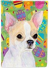 Caroline 's Treasures ss4819gf Chihuahua