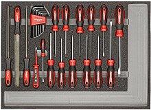 CAROLUS 2250.903 Werkzeugsatz Schraubendreher und Feilen, 1 Stück