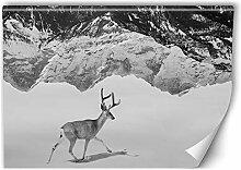 Carowall Fototapete aus Vlies Hirsch Berge