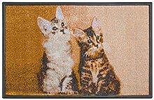 Carpet Diem Fußmatte Soft Cats Katzen 40x60cm