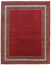 Carpetfine: Mir Teppich 249x346 - Braun,Rot - Handgeknüpft - Indien - Rechteck