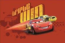 Cars Motiv D Spielteppich Kinderteppich Spielmatte 80 x 120 cm