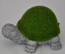 Casablanca Figur 'Gartenfreunde' Schildkröte grau grün ca 11cm hoch 26986 Dekoidee Gartendeko Geschenkidee Sommerprospekt 2015