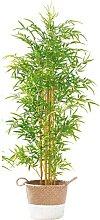 casaNOVA Kunstpflanze BAMBUS 160 cm im Eintopf