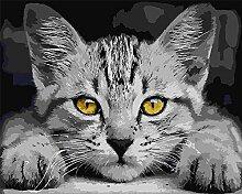 Cat 5D Diy Diamantmalerei Kreuzstich Volldiamant