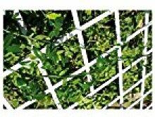 Catral Deutschland Rankgitter PVC ausziehbar 1,00