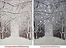 CBK-MS LED Wandbild mit Beleuchtung Verschneite