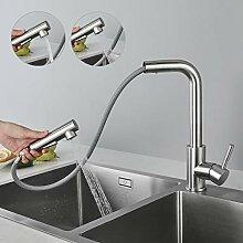 CECIPA Wasserhahn Küche Ausziehbar,