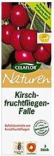 CELAFLOR® Naturen® Kirschfruchtfliegen-Falle, 1