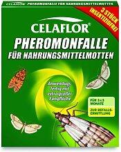 Celaflor Pheromonfalle für Nahrungsmittelmotten,