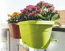 Centi Blumenkasten Balkonkasten Pflanzkasten mit