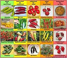 Chili Set 20 Sorten von pikant bis extrem scharf