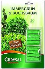 Chrysal Immergrün & Buchsbaum Düngestäbchen 20