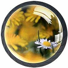 Chrysanthemum Schrankknöpfe aus ABS-Glas, für