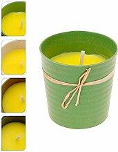 Citronella Candle 07934Kerze Zitronengras mit