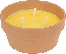 Citronella Candle 08261Kerze Zitronengras +
