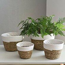 CJFael Hausgarten Pflanze/Strauch/Flowe Ornamente