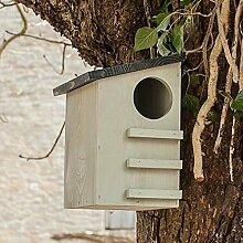 CKB Ltd® Squirrel House Eichhörnchen