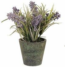 Clayre & Eef 6PL0054 Lila Deko Lavendel Pflanze im Topf