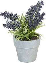 Clayre & Eef Lavendel Pflanze im Topf