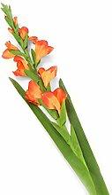 Closer 2 Nature künstliche Blumen Floral