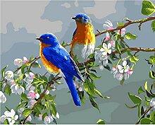 cmhai (Kein Rahmen) Birds Lover DIY Digital Malen
