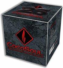 CocoSoul® 1kg 100% Kokosnuss Naturkohle für
