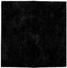 Codiac 804622 Snack &-Fritteuse Family Seb für Filtra/Oleoclean Aktivkohle-Maxyfry 23 x 23 cm